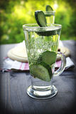 Cold drinking water with cucumber and dill in a glass. Carbonated bottled water with cucumber, dill and toast on a wooden table Stock Image