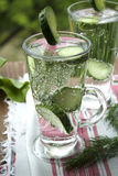 Cold drinking water with cucumber and dill in a glass. Clean drinking water with cucumber and dill in a glass on a linen napkin Royalty Free Stock Images