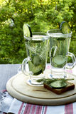 Cold drinking water with cucumber and dill in a glass. Cold drinking water in a glass with cucumber and dill on a wooden board Royalty Free Stock Images
