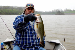 Cold fisherman. Fisherman holding large mouth bass for release closeup royalty free stock photo