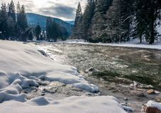 Cold flow of forest river in snowy spruce forest. Ice and snow on the rocky shore. gorgeous winter scenery in mountainous area on a cloudy day stock photo