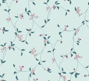 Cold flower pattern Royalty Free Stock Image