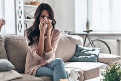 Cold and flu. Sick young woman blowing the nose using tissue paper while sitting on the sofa at home stock photo