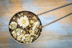 Cold, flu and cough  herbal tea. Scoop of cold, flu and cough herbal tea with chrysanthemum flower, chamomile, spearmint, ginger, honeysuckle Stock Image