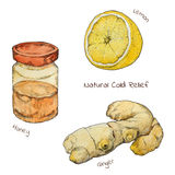 Cold and flu natural relief watercolor set. Ginger. Honey. Lemon Isolated. Hand drawn style Stock Photography