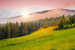 Cold fog on hot sunrise in mountains Royalty Free Stock Photos