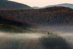 Cold fog on hot sunrise in mountains Stock Photo