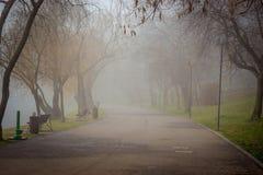 IOR Park. Cold foggy morning IOR Park, Bucharest, Romania Royalty Free Stock Photos