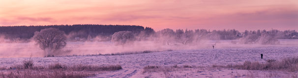 Cold fogy morning. On the river. Belarus stock images