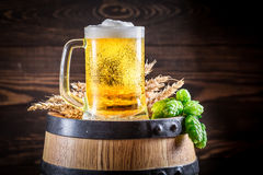 Cold and fresh beer in glass on wooden barrel Royalty Free Stock Photography