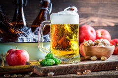 Cold and fresh beer Royalty Free Stock Image