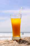 Cold fresh cocktail Royalty Free Stock Image
