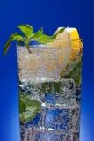 Cold fresh lemonade Stock Photography
