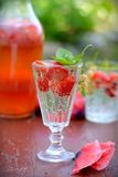 Cold fresh lemonade drink with strawberry Stock Image