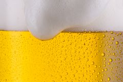 Beer from the Munich Beer Festival. A cold fresh overflowing beer with froth from Bavaria. ideal for websites and magazines layouts Royalty Free Stock Photos