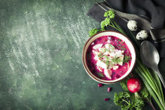 Cold fresh summer soup with beetroot, cucumber, radish and egg. Royalty Free Stock Image