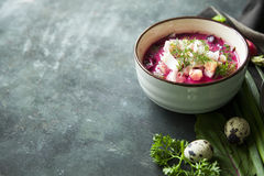Cold fresh summer soup with beetroot, cucumber, radish and egg o Royalty Free Stock Images