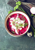 Cold fresh summer soup with beetroot, cucumber, radish and egg o Stock Photography