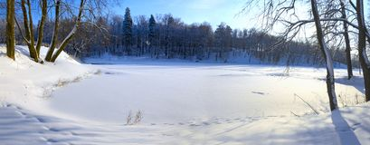Sunny panorama of frozen pond in the park surrouded by the snow-covered trees. stock photos