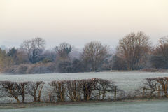 Cold and frosty morning Stock Photo