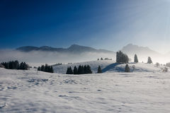 Cold and frosty winter landscape Royalty Free Stock Images