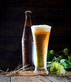 Cold frothy beer bottle and hops on a wooden background. Beer, bottle and hop on a wooden background Royalty Free Stock Photos