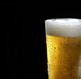 The cold frothy beer in a glass on a black background. Beer in a glass on a black background Royalty Free Stock Photos