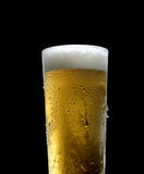 The cold frothy beer in a glass on a black  background Stock Photos