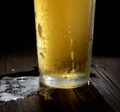 The cold frothy beer in a glass on a black wooden background. Beer in a glass on a black background Royalty Free Stock Image