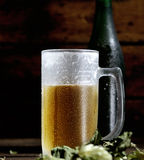 Cold frothy beer in a glass bottle and hops on a dark  background. Cold frothy beer in a glass bottle and hops Royalty Free Stock Photo