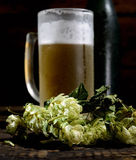 Cold frothy beer in glass, bottle and hops on a wooden background Royalty Free Stock Photo