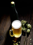 Cold frothy beer in glass, bottle and hops on a wooden background Stock Photos