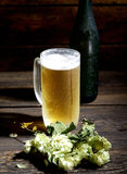 Cold frothy beer in glass, bottle and hops on a wooden background Stock Images
