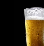 The cold frothy beer in a glass on a dark  background. Beer in a glass on a black background Royalty Free Stock Images