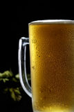 Cold frothy beer in a glass and hop on a black background. Cold frothy beer in a glass and hop Royalty Free Stock Photo