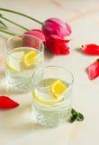 Cold fruit juice with mint and lemon orange. A refreshing fruit juice with sliced lemon and orange, mint on a light background Stock Image