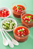 Cold gazpacho soup in glass Stock Images