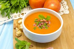 Cold gazpacho soup Royalty Free Stock Photos