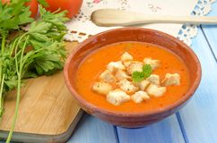 Cold gazpacho soup Royalty Free Stock Image