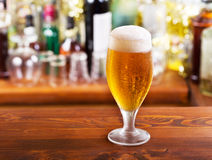 Cold glass of beer Royalty Free Stock Photo