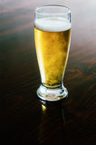 Cold glass of beer Royalty Free Stock Photography