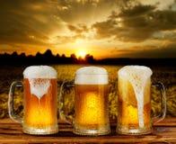 Cold glass mug of beer Stock Photos