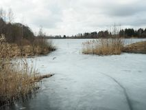 Cold, gloomy, winter day at the beginning of winter Royalty Free Stock Photography