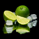 Cold green lime ice Royalty Free Stock Photography