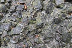 Cold greytone texture Royalty Free Stock Photos