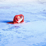 Cold heart. Stock Images