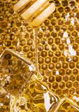 Cold honey comb Stock Images