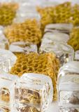 Cold honey comb. Honey is a sweet and viscous fluid produced by bees and other insects from the nectar of flowers. Honey is significantly sweeter than table Stock Photo