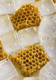 Cold honey comb. Honey is a sweet and viscous fluid produced by bees and other insects from the nectar of flowers. Honey is significantly sweeter than table Royalty Free Stock Images