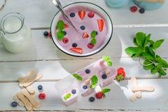 Cold ice cream with fruity yogurt Stock Photography